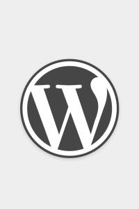 benefits wordpress website